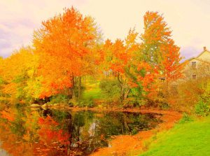 Fall on the Waters by JE Lillie